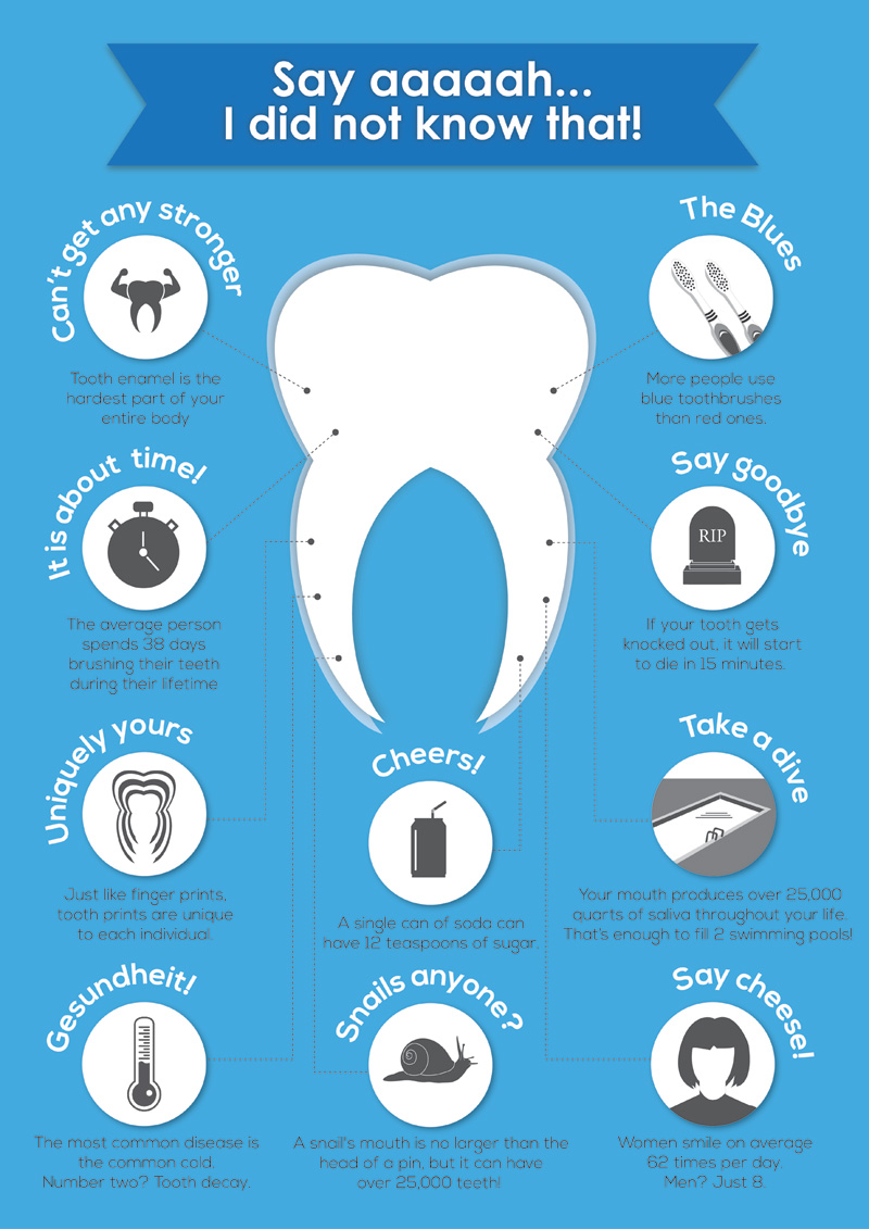 Most Interesting Facts >> 10 Most Interesting Facts About The Tooth Infographicbee Com