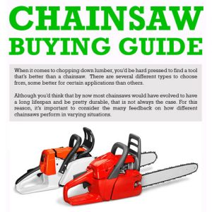 Infographic: Chainsaw Buying Guide