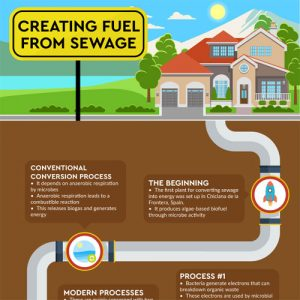 How Sewage Will Become the Fuel of the Future
