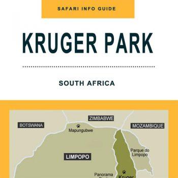 Kruger Park Safari Infographic