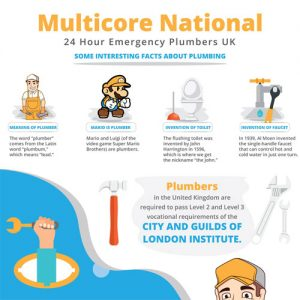 Infographic: Interesting Plumbing Facts