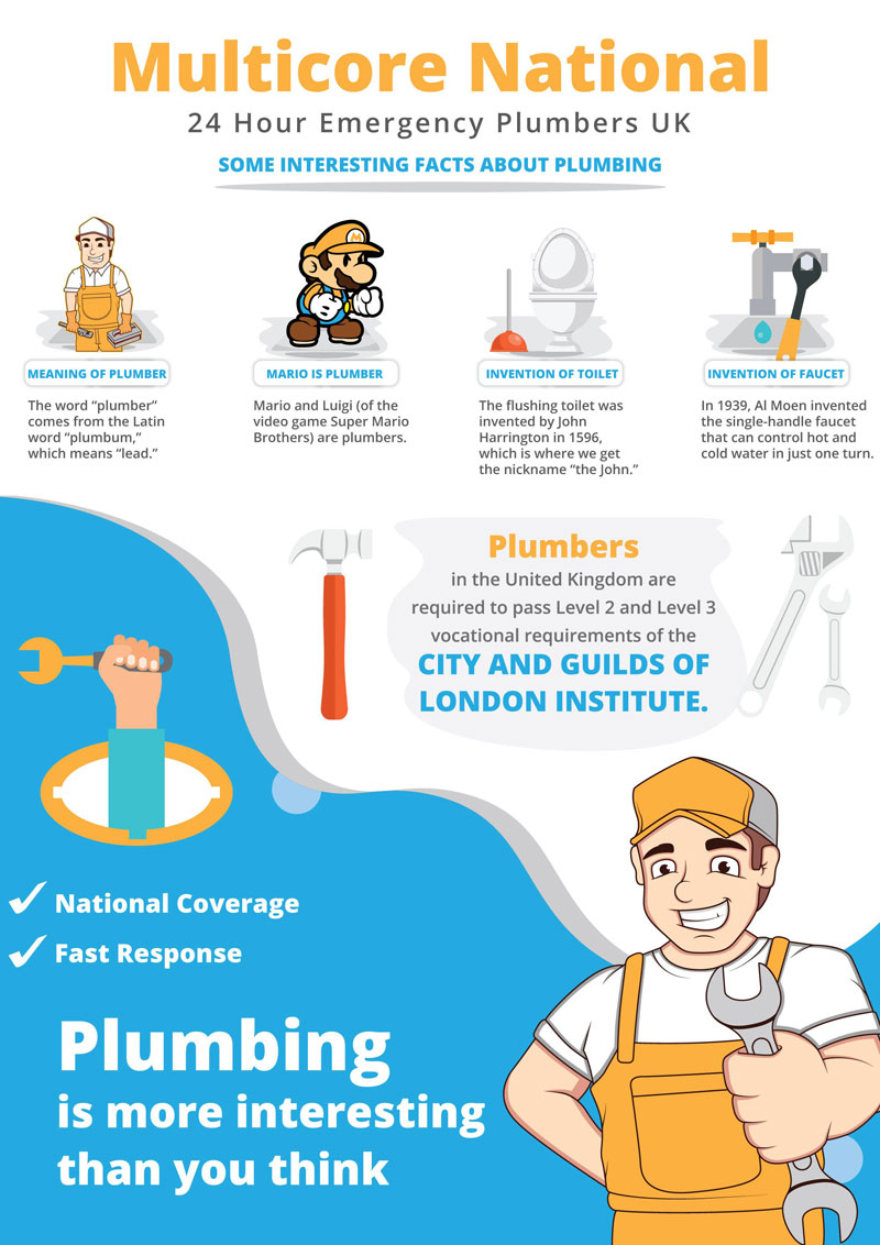 Infographic Interesting Plumbing Facts Infographicbee Com