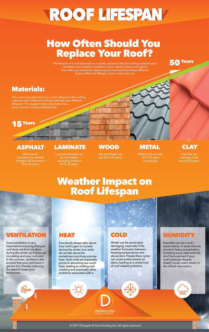 How Often Should I Replace My Roof
