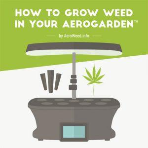 grow-medical-marijuana-aerogarden-fimg
