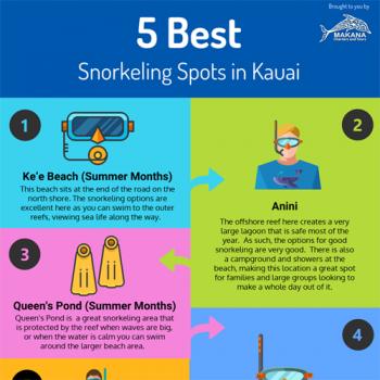 best-snorkeling-spots-kauai-fimg