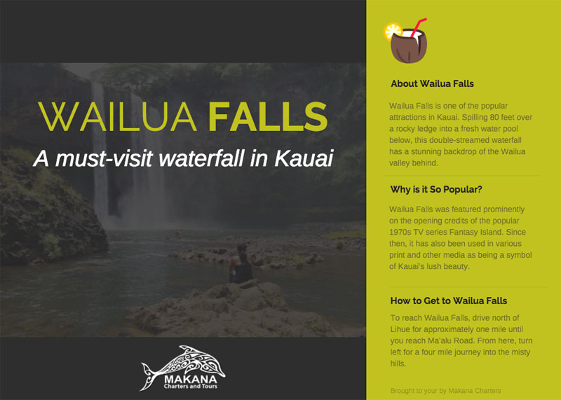 Wailua Falls: A Must-Visit Waterfall in Kauai