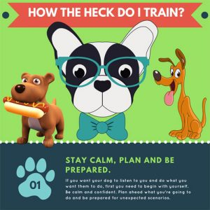 5-ways-train-your-dog-fimg