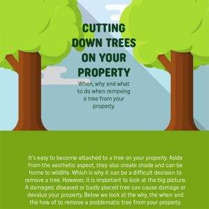 cutting-down-trees-property-fimg