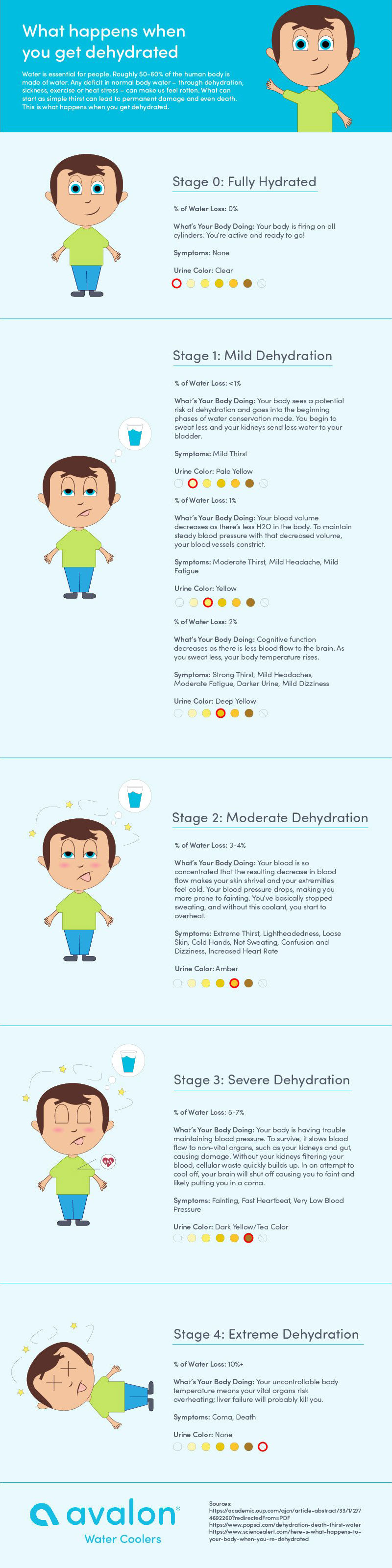 What happens when you get dehydrated?