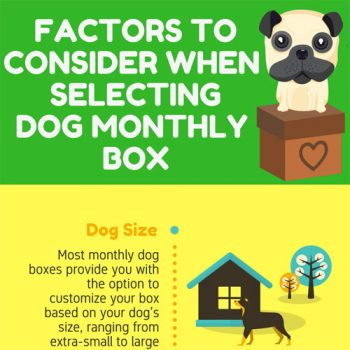 selecting-dog-subscription-box-fimg