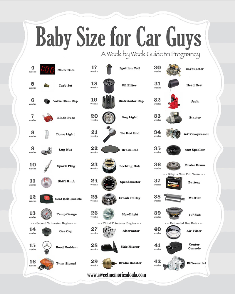 Car Guy's Guide to Baby Size During Pregnancy