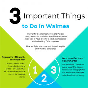 waimea-to-do-list-infographic-fimg