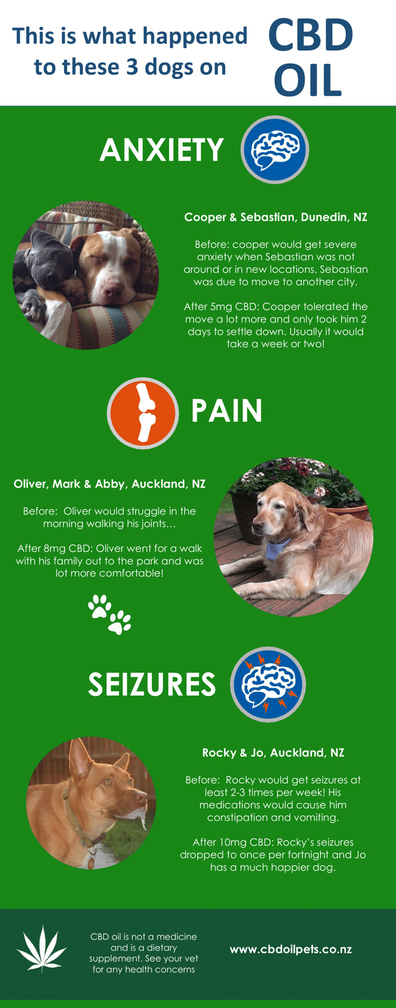 The Story of 3 Dogs Using CBD Oil