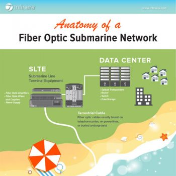 anatomy-of-a-submarine-network-fimg