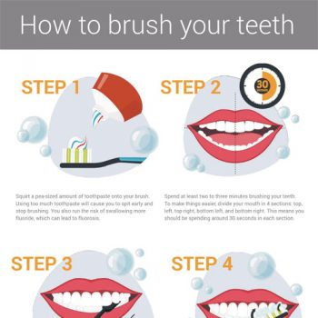 how-to-brush-your-teeth-infographic-fimg