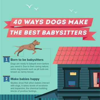 40-ways-dogs-make-the-best-babysitters--fimg