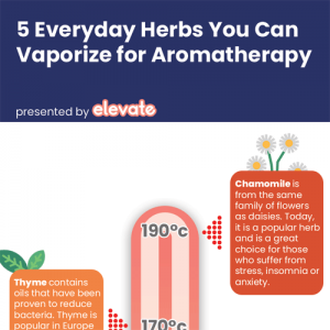 herbs-you-can-vape-aromatherapy-fimg
