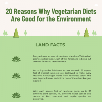 why-vegetarian-diets-are-good-for-environment-fimg