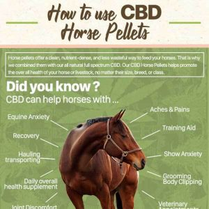 bd-pellets-for-horses-work-fimg