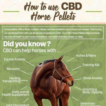 bd-pellets-for-horses-work-fimg