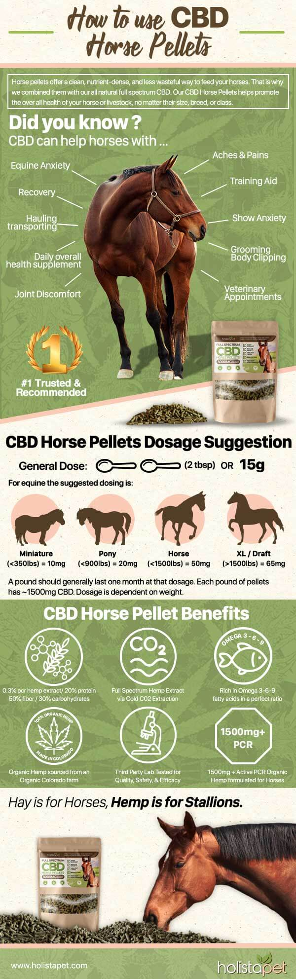 How Do CBD Pellets for Horses Work
