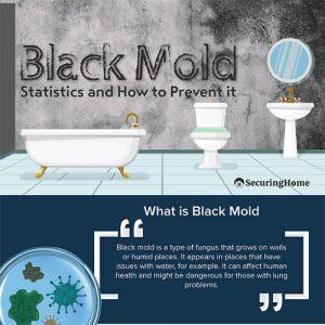 black-mold-statistics-prevention-tips-fimg