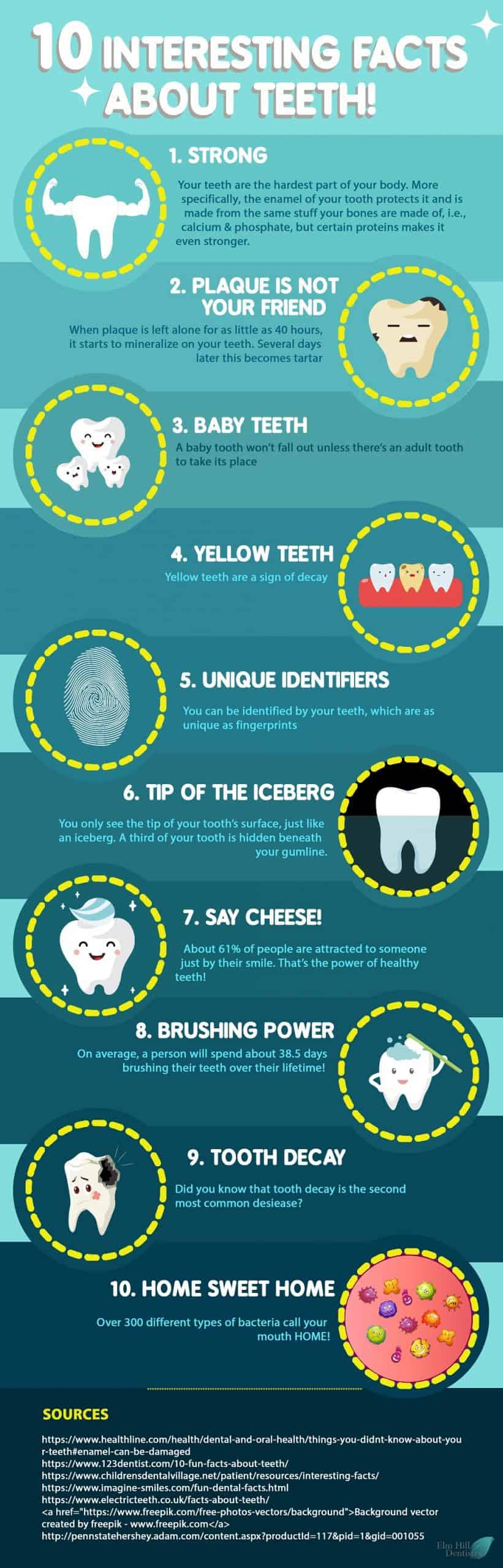 10 Super Interesting Facts About Teeth