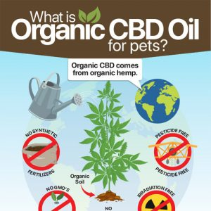 organic-cbd-oil-for-pets-fimg