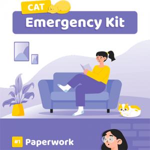 cat-emergency-kit