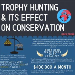 Trophy Hunting & its Effect on Conservation