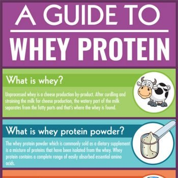 A Guide to Whey Protein